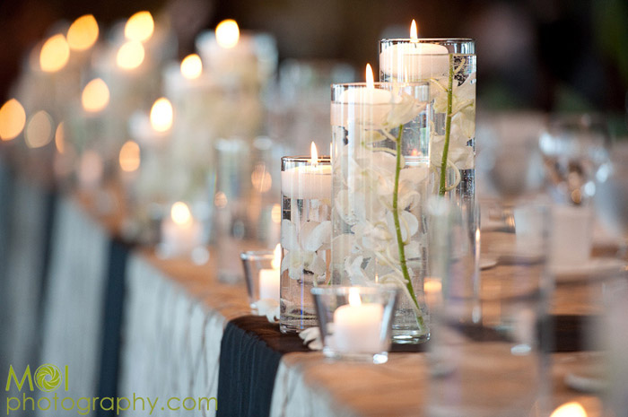 Jack jill weddings vancouver wedding event decor and rental slide 5 junglespirit Image collections